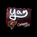 Yam (Folia)