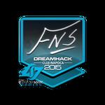 FNS - naklejka Cluj'15