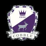 Odznaka - Cobblestone