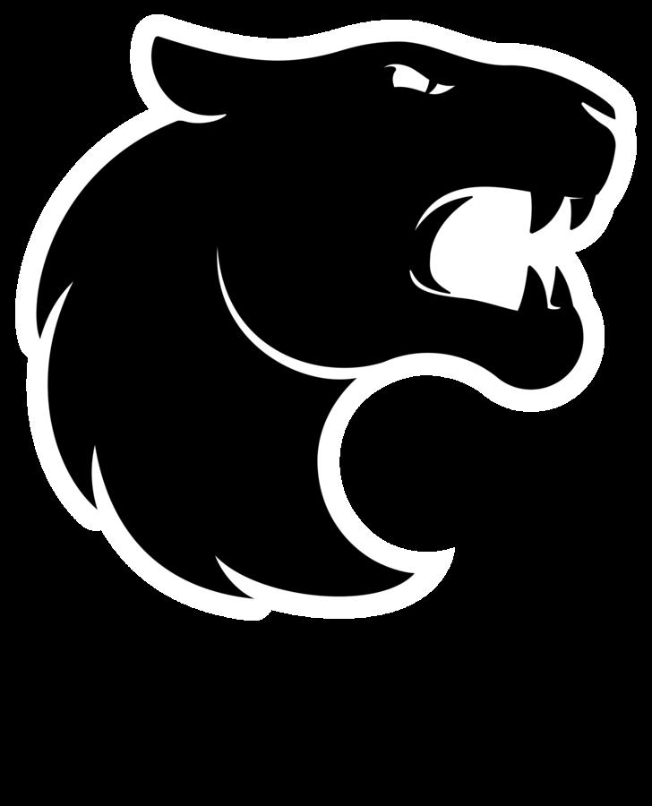 FURIA eSports - logo