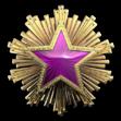Medal za służbę 2016 Poziom 5