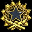 Medal za służbę 2017 Poziom 7