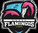 Doral Flamingos e-Sports
