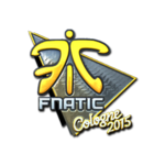Fnatic (Folia) ESL One Cologne 2015