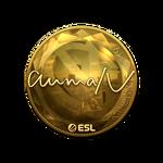 AumaN (Gold) Katowice'19