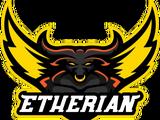 Etherian Academy