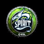 Team Spirit (Folia) Katowice'19
