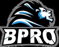 BPro Gaming - logo