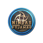 Ninjas in Pyjamas ESL One Cologne 2014
