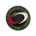 CompLexity Gaming (Holo) Katowice'19