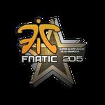 Fnatic Cluj'15
