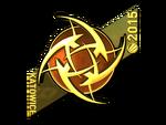 Ninjas in Pyjamas (Gold) ESL One Katowice 2015