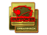 IBUYPOWER (Gold) DreamHack Winter 2014