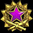 Medal za służbę 2017 Poziom 5