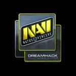 Natus Vincere (Folia) DreamHack Winter 2014