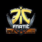 Fnatic (Folia) Kraków'17