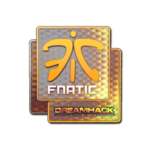 Fnatic (Holo) DreamHack Winter 2014