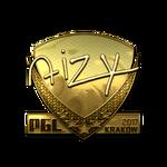 Aizy (Gold) Kraków'17