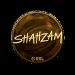 ShahZaM (Gold) Katowice'19