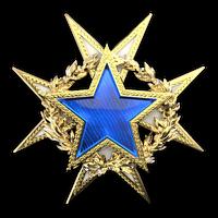 Csgo-service medal 2015 lvl1-1-