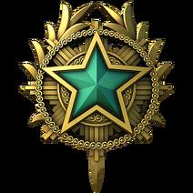 Service medal 2020 lvl2 large