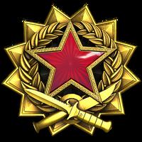 Service medal 2017 lvl6 large-1-