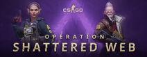 Steam header csgo op9
