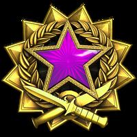 Service medal 2017 lvl5 large-1-