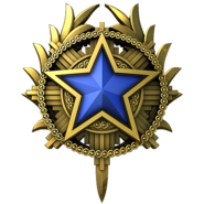 Service medal 2020 lvl3 large