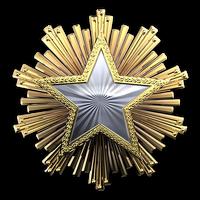 Csgo-service medal 2016 1-1-
