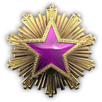 Csgo-service medal 2016 5-1-