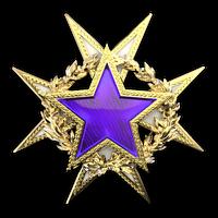 Csgo-service medal 2015 lvl2-1-