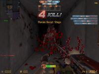 Cs assault 20120508 0157570