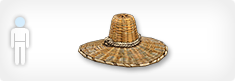Y20s1strawhat head