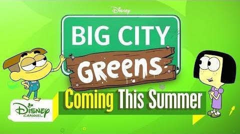 Meet the Greens Big City Greens Disney Channel