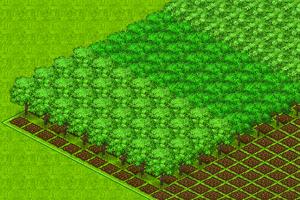 TreesDetail1 578x386