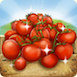 TomatoesRibbon