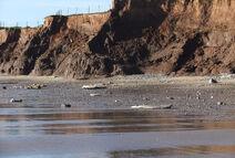Coastal-erosion-586998