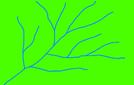 Réseau dendritique