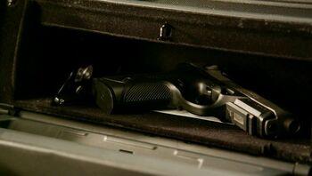 Px4 inox glove box