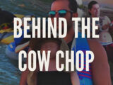 Behind the Cow Chop