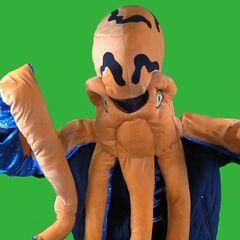 Octopus Aleks