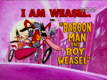 Baboon Man and Boy Weasel