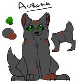 Aurora Reference