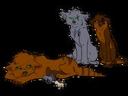 Marra, Rune, Kia, Pups