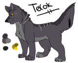 Terok Reference
