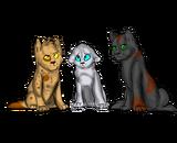 Erol, Tia, Aurora1