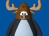 Zeus The Moose Head
