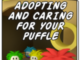 Pet Catalog