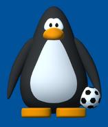 FootballPlayerCard